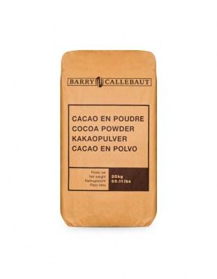 Какао порошок натуральный Barry Callebut 10-12% (25 кг)